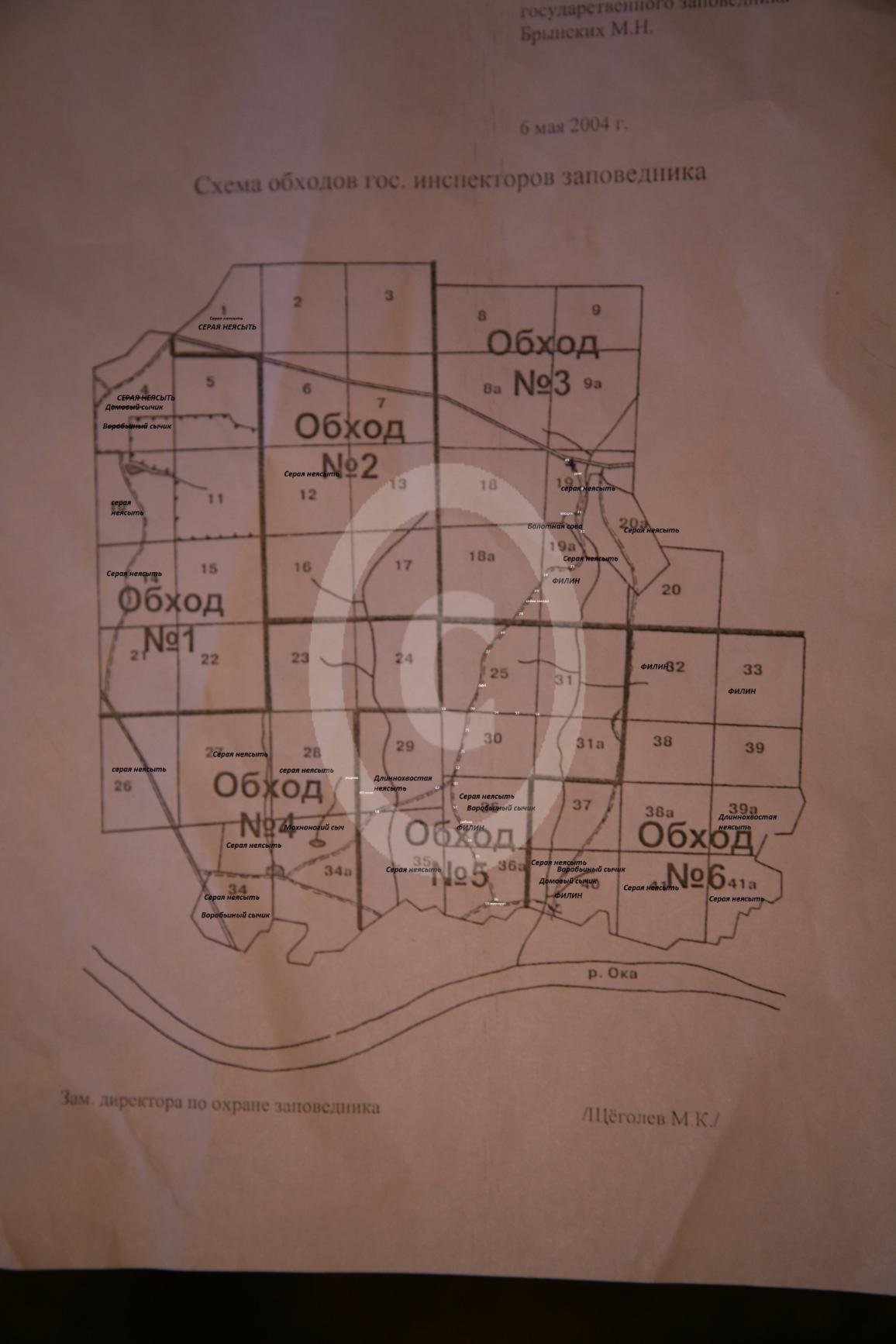 Рис 1 Карта встреч сов с 1954 г по 2013 год (59 летний период времени).