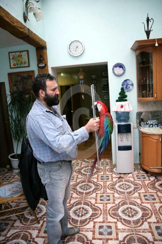 Фото: С попугаями очень интересно общаться и наблюдать как они решают поставленные задачи.